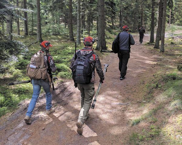Между стрелковыми рубежами — прогулка по живописному датскому лесу
