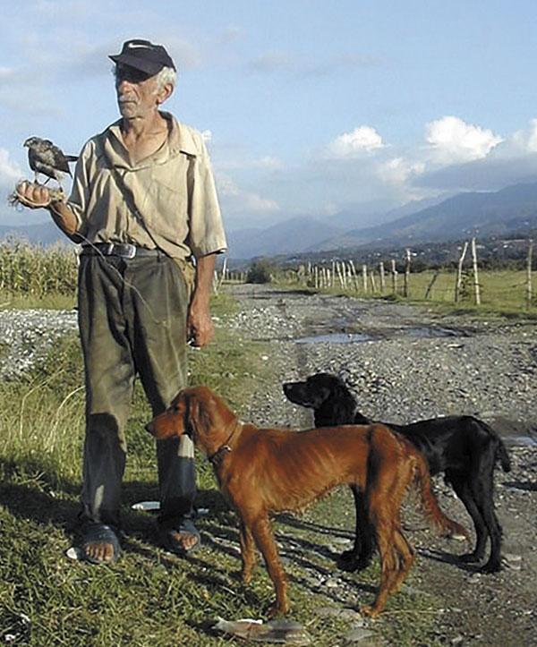 Абхазский сокольник — базиери