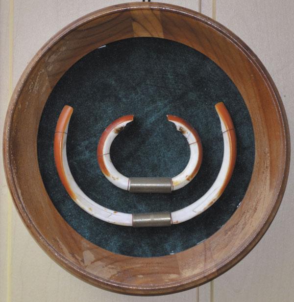 Трофейный экземпляр: длина — 110 см, вес — 26 кг