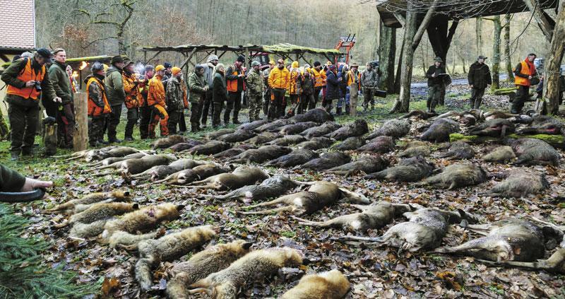 Охотники-журналисты со всего мира на ежегодной охоте компании Carl Zeiss Sports Optics