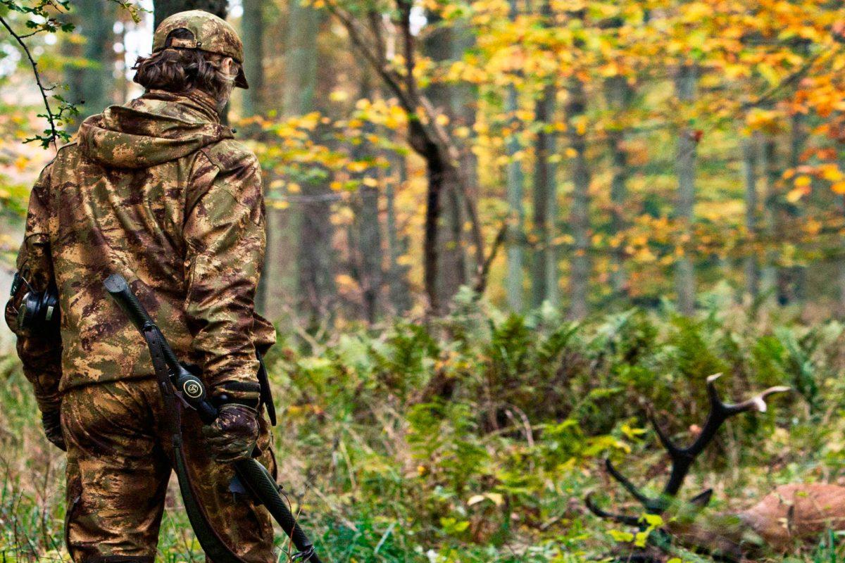 Оставаться невидимым. Входим в лес в режиме «stealth»