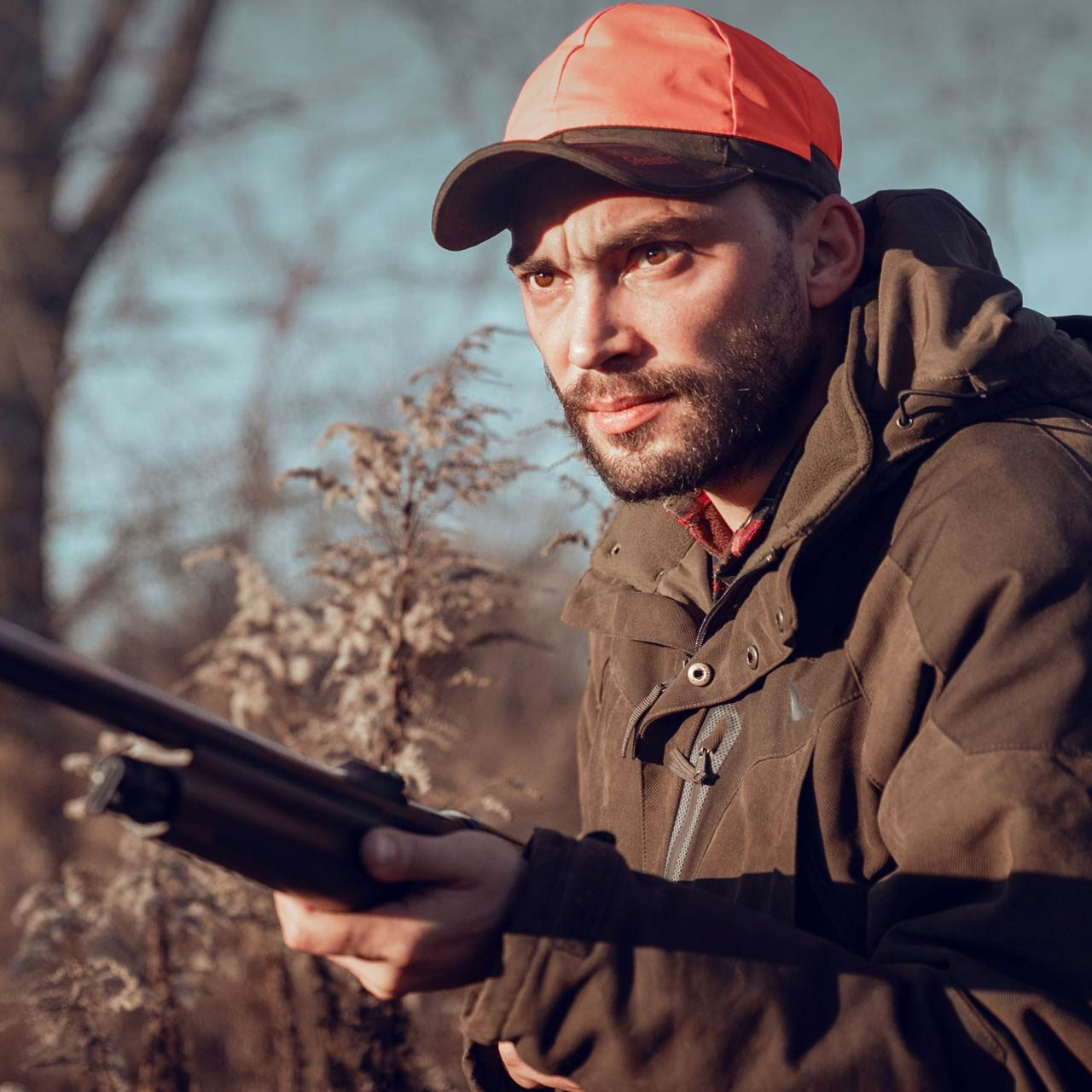 Мои охоты с Ozkan FX 015: Сезон продолжается