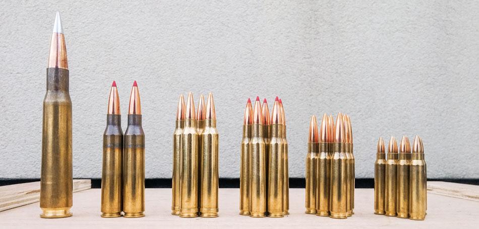 Один матчевый патрон Hornady в .50 BMG стоит столько же, что и пара в .338 LM, четыре в .300 WinMag, пять в .30-06, шесть в .308 Win и десяток в .223 Rem. А уж .22 LR за эти деньги можно горстями черпать