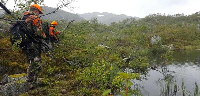 Тундровая растительность, обилие воды и камней — и, главное, ни малейших следов присутствия человека. Очень красиво!
