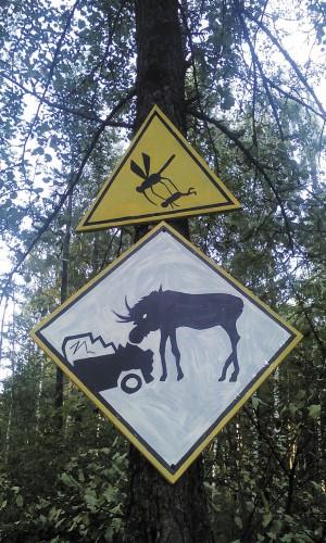 На охоте опасность подстерегает на каждом шагу