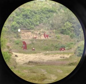 Вид через зрительную трубу; 550 м — очень приличная дистанция для охотничьего комплекса!