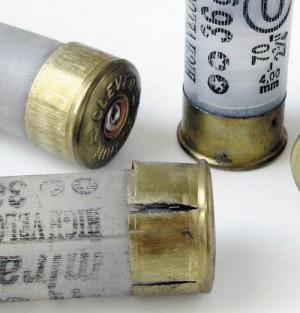 Стреляные гильзы в сравнении с нестреляным патроном 12-го калибра (справа)